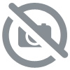 Costume Spiderman